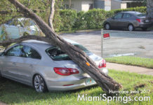 Hurricane Irma Hits Miami Springs