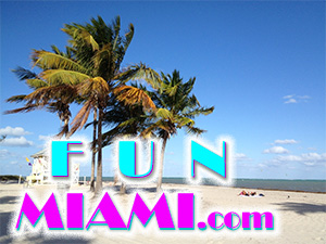 Fun Miami