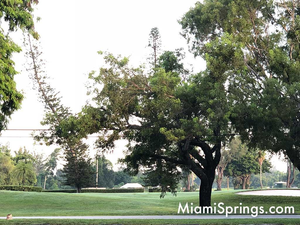 Miami Springs Golf Course