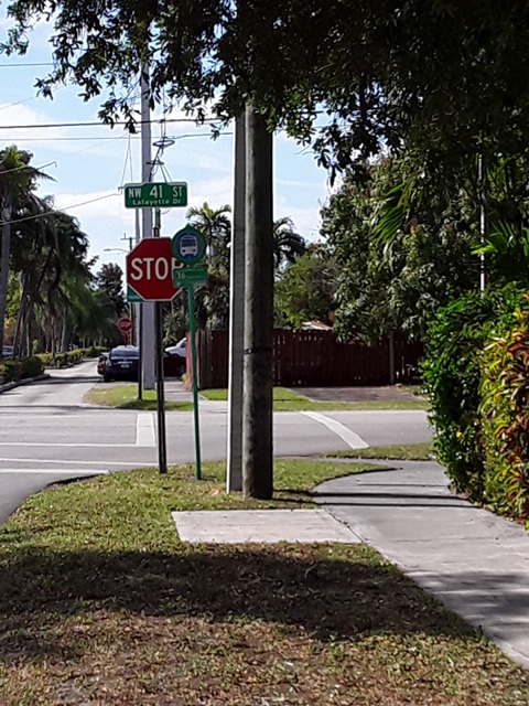 Trees trimmed allow drivers a clear view of the upcoming stop sign.