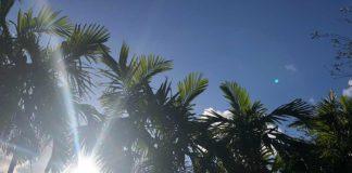 Gorgeous Weekend in Miami Springs