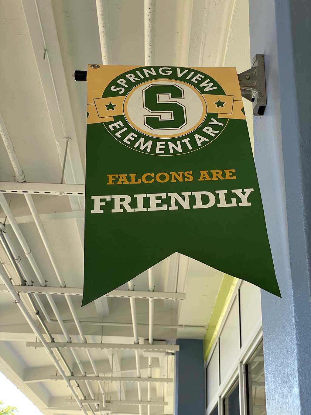 Springview Elementary: Falcons are Friendly